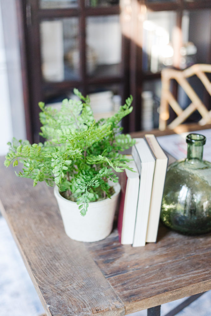 Green potted plant on desk with books.